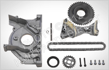 Our Oil Pump Chain and Tentioner Kits - Photo